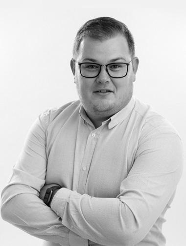Radu Aurel